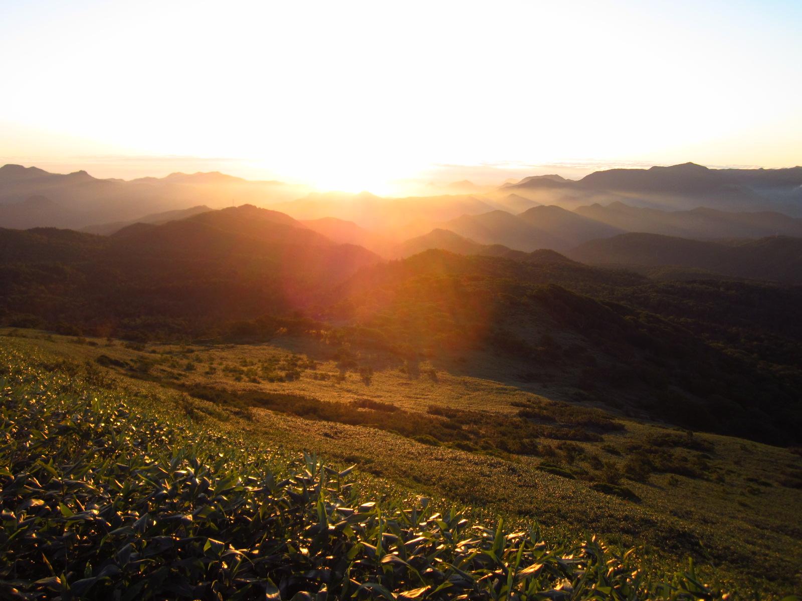 無意根山日の出